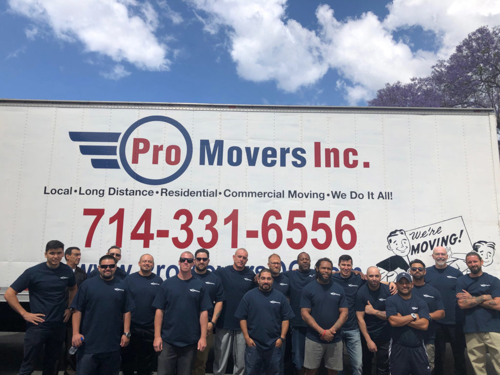 Our professional team standing in front of our trucks.